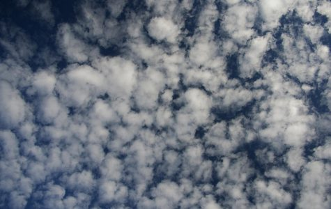 In weather folklore, altocumulas clouds are called a mackerel sky because the clouds look like fish scales. Photo via Wikimedia Commons under Creative Commons license.""